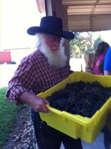 Max w grapes